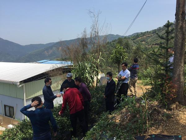 民盟省委组织省农科院专家赴清远开展助力乡村振兴活动